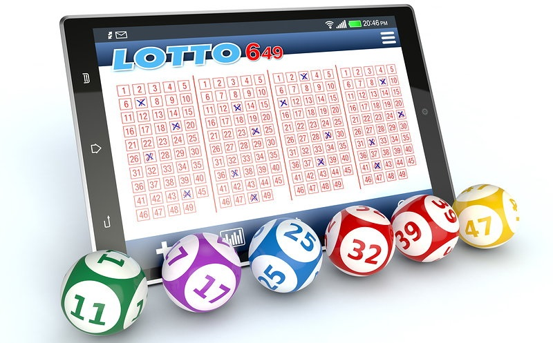 The Forbidden Fact About Betting Casino Revealed